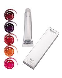 Special Meshes - краска для цветного мелирования